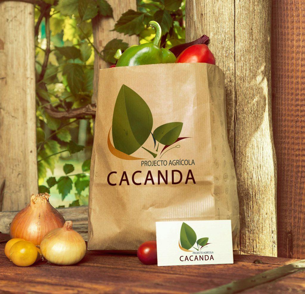 עיצוב לוגו לחברת CACANDA מאנגולה